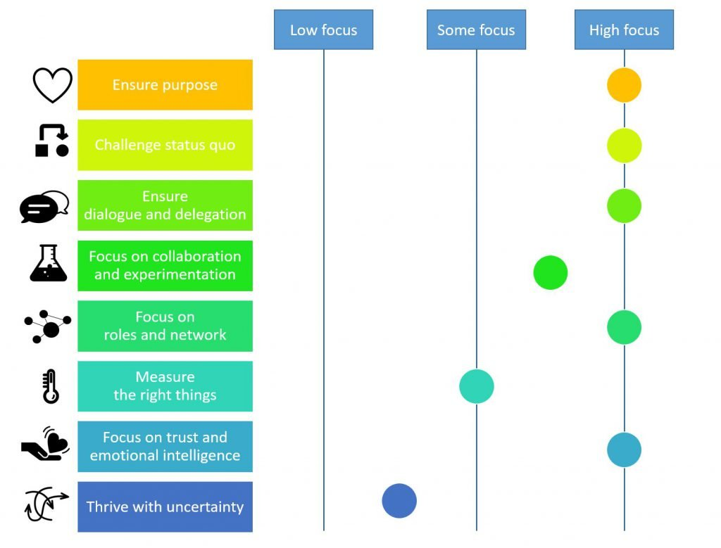 dong energy wind power case leadership focus characteristics