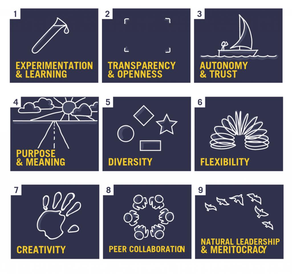 9 principles of adaptable companies