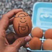 hønen og ægget